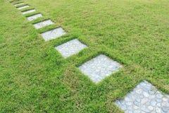 Grünes Gras im Garten gerieben mit Weg Stockbild
