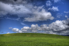 Grünes Gras-Landschaft und blauer bewölkter Himmel HDR Stockbild