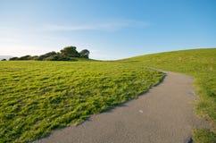 Grünes Gras-Landschaft und blauer Himmel mit Pfad Stockbilder