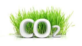 Grünes Gras mit CO2 Stockfoto