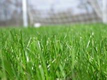 Grünes Gras mit Fußballnetz Stockbilder