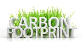 Grünes Gras mit Kohlenstoffabdruck Stockfotos