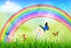 Grünes Gras mit Regenbogen Stockbild