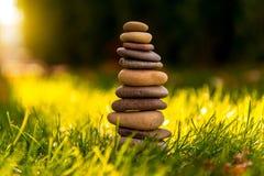 Grünes Gras mit Steinen und Gänseblümchen Lizenzfreie Stockfotos
