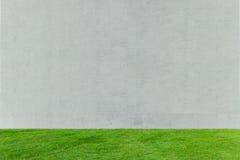 Grünes Gras mit weißem Beton Stockfotografie