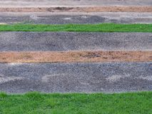 Grünes Gras am Park Lizenzfreie Stockbilder