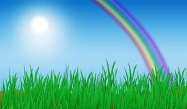 Grünes Gras-Regenbogen-Hintergrund Lizenzfreies Stockfoto