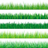 Grünes Gras-Set Auf weißem Hintergrund Lizenzfreie Abbildung