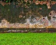 Grünes Gras und alte Backsteinmauer Stockfoto