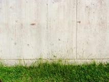 Grünes Gras und alte Betonmauer Stockfotografie