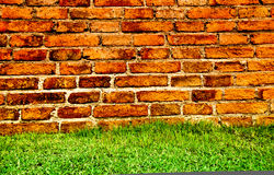Grünes Gras und Backsteinmauer Lizenzfreies Stockbild