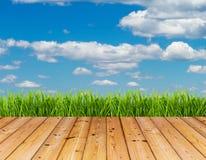 Grünes Gras und blauer Himmel auf Holzfußbodenhintergrund stockbilder