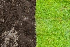 Grünes Gras und braune Boden-Landschaft Stockfoto