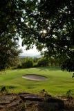 Grünes Gras und Golfplatz stockbilder