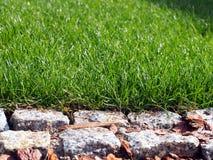 Grünes Gras und Granit, die Nahaufnahme pflastert Lizenzfreie Stockfotos