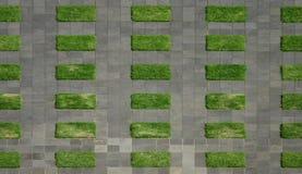Grünes Gras und grauer Asphalt Stockfoto