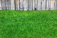 Grünes Gras und hölzerne Wand Stockfotografie