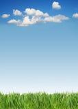 Grünes Gras und Himmel Lizenzfreies Stockbild