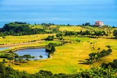 Grünes Gras und karibisches Meer Stockfotos