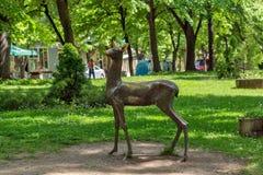 Grünes Gras und Park in der Mitte der Stadt von Hisarya, Bulgarien stockfoto