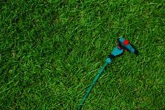 Grünes Gras und Sprenger Lizenzfreies Stockfoto
