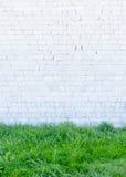 Grünes Gras und Wand stockfoto