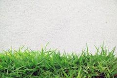 Grünes Gras und weißer Sand Stockbilder