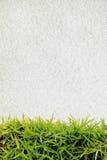 Grünes Gras und weißer Sand Stockfotografie