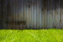 Grünes Gras und Zaun Stockfotos