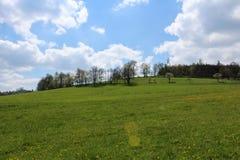 Grünes Gras, Wald und blauer Himmel Tschechische Landschaft Lizenzfreies Stockfoto
