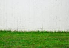 Grünes Gras, weiße Wand Stockbilder