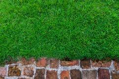 Grünes Gras, Ziegelsteinhintergrund, orange lizenzfreie stockfotos