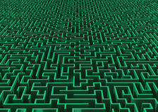 Grünes großes Labyrinth zum Horizont Lizenzfreie Stockbilder