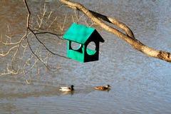 Grünes hölzernes Vogelhaus, das am Baumast mit Enten hängt Lizenzfreies Stockbild