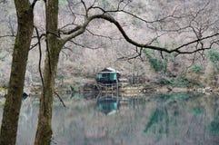 Grünes Haus durch den See Stockbilder