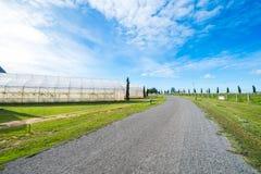Grünes Haus für die Landwirtschaft und die Straße mit blauem Himmel in ländlichem Stockfotos