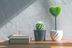 grünes Herz, Buchkaktusblume auf hölzerner Tabelle, Liebe und valentin Lizenzfreie Stockfotos