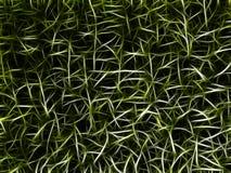 Grünes Horrorchaos. Abstrakter Hintergrund. Stockfotos