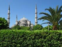 Grünes Istanbul Stockfotos