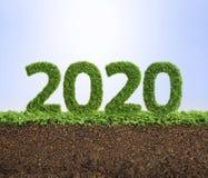grünes Jahrkonzept der Ökologie 2020 Stockbilder