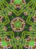 Grünes Kaleidoskop Lizenzfreie Stockfotografie