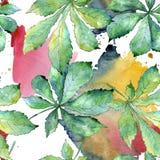 Grünes Kastanieblatt Blumenlaub des Blattbetriebsbotanischen Gartens Nahtloses Hintergrundmuster Lizenzfreie Stockfotografie