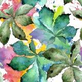 Grünes Kastanieblatt Blumenlaub des Blattbetriebsbotanischen Gartens Nahtloses Hintergrundmuster Lizenzfreie Stockbilder