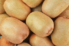 Grünes Kiwi Actinidia deliciosa Stockbild