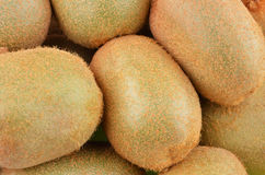 Grünes Kiwi Actinidia deliciosa Stockbilder