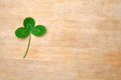 Grünes Klee-Blatt auf hölzernem Brett Stockfotos