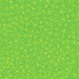 Grünes Kleemuster Stockbild
