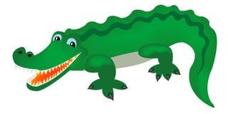 Grünes Krokodil stockbilder