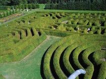Grünes Labyrinth Stockbild