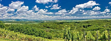 Grünes Landschaftspanorama unter blauem Himmel Stockfoto